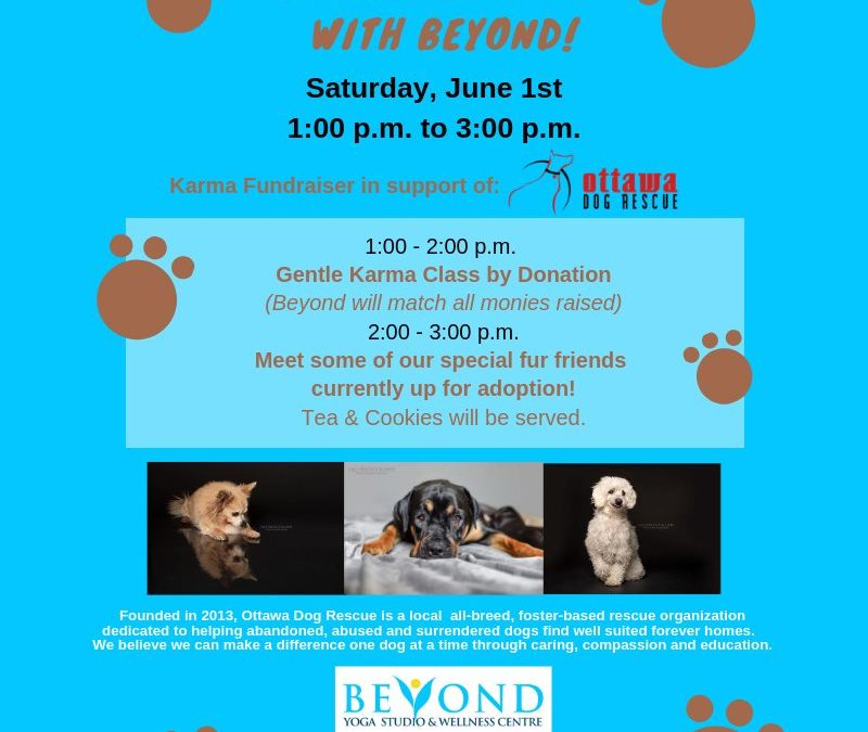 SATURDAY JUNE 1st – Paw it Forward with Beyond!